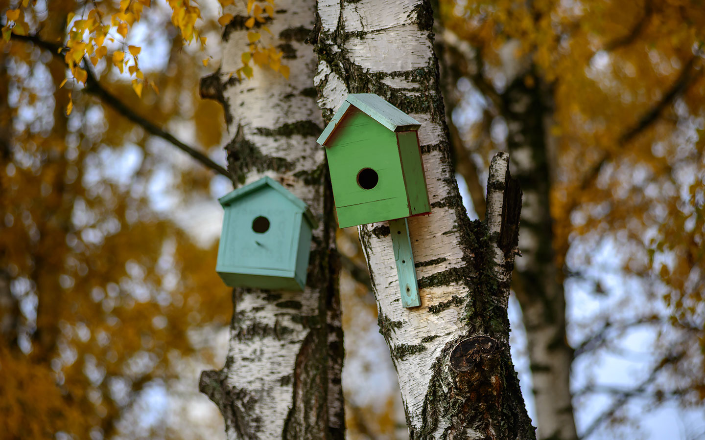 agentie imobiliara habitat brokers oferte apartamente bucuresti